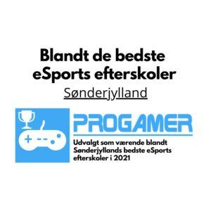 Sønderjylland - Bedste eSports efterskoler 2021